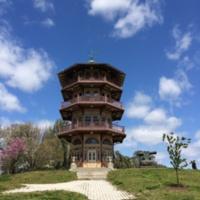Patterson Park Pagoda, Patterson Park